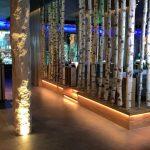 Rulantica: Lichttechnik im Ruhe- und Saunabereich